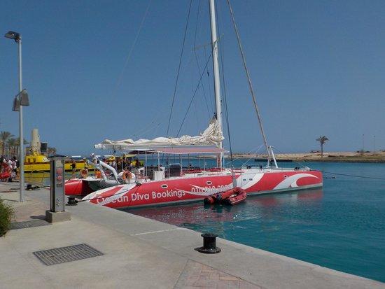 Ocean Diva Catamaran Sailing Cruises: Wie aus dem Katalogm aber selbst so erlebt !