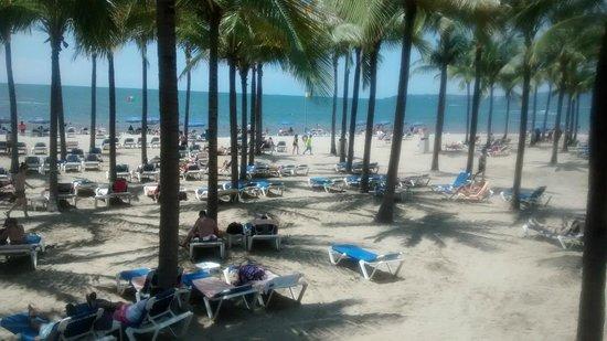 Hotel Riu Vallarta: En el limite del hotel y la playa...