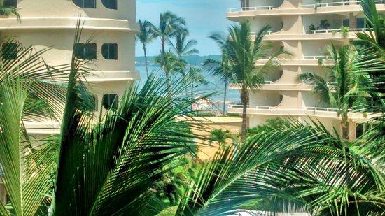 Hotel Riu Vallarta: Vista lateral desde la habitacion...