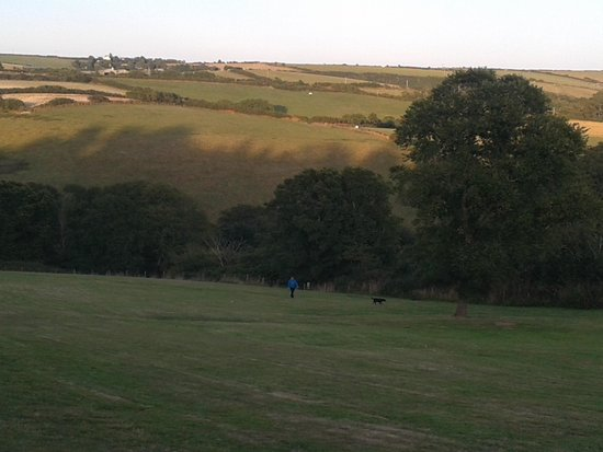 Seaview Holiday Village: Field in front of caravan regent 16 for walking the dog
