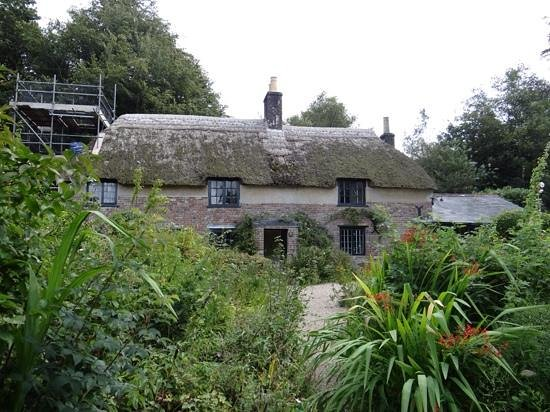 Hardy's Cottage: House with overgrown garden