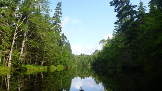 Kingfisher Outdoors : Glassy Morrell River near launch point