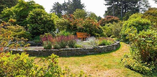 Connie Hansen Garden Conservancy: Garden with bench