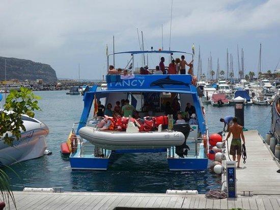 Fancy II Whale Watching: el barco en el puerto