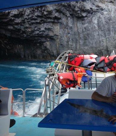 Fancy II Whale Watching: cueva Bonita