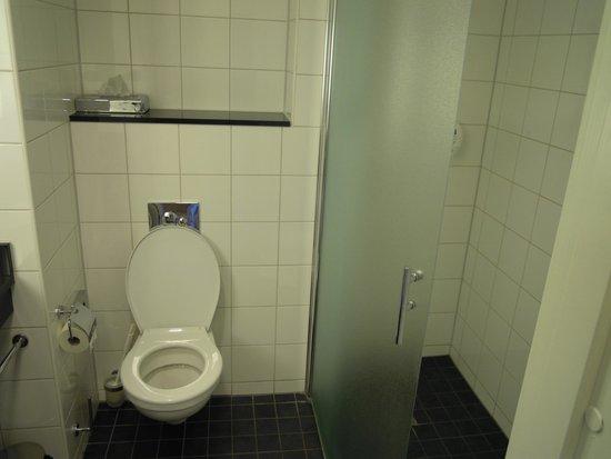 Park Inn by Radisson Stockholm Hammarby Sjostad: toilet and wet room