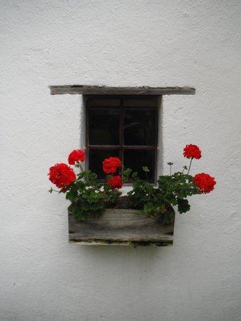 Österreichisches Freilichtmuseum Stübing: Window with flowers