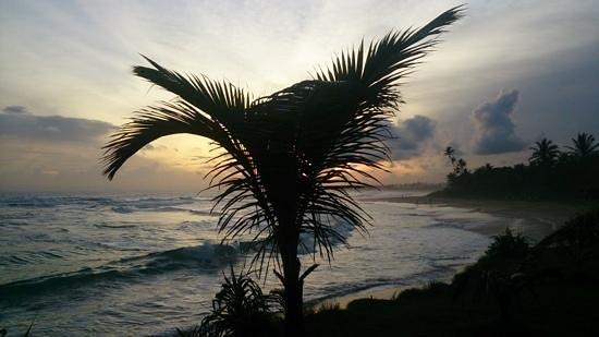 Club Koggala Village : Koggala Beach from the hotel