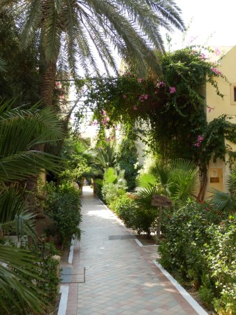 Hotel Paradis Palace: Beautiful gardens