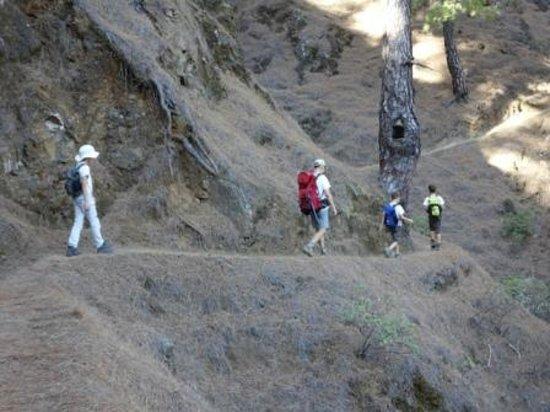 Parque Nacional de la Caldera de Taburiente: camino hacia el pico Bejenado