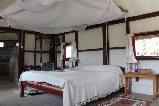 Swara Plains Acacia Camp: Room