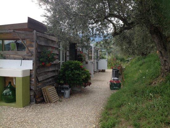 Campsite Rocca di Sotto: Servizi, showers & fridge area