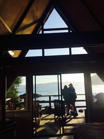 Duffin Cove Oceanfront Lodging: Looking out from inside the cabin