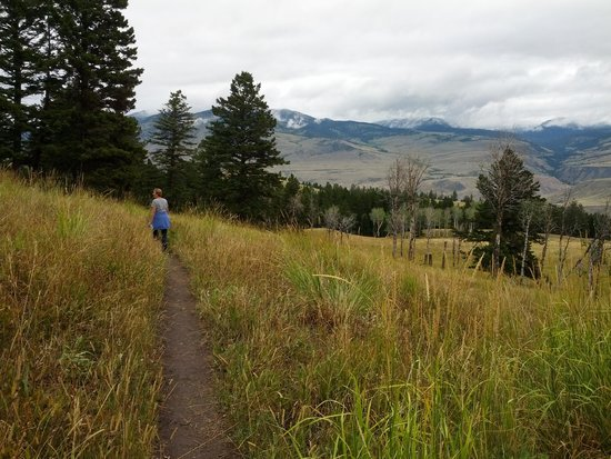 Beaver Ponds Loop Trail : Beautiful views from the trail