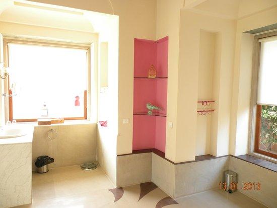 Tree of Life Resort & Spa Jaipur : Perfect Washroom Detailed