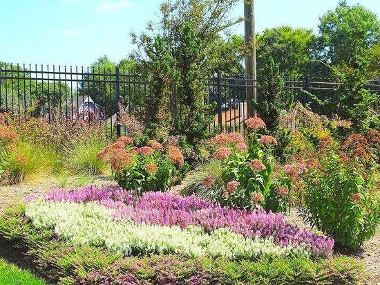 Butterfly garden picture of gateway gardens greensboro for Garden gateway