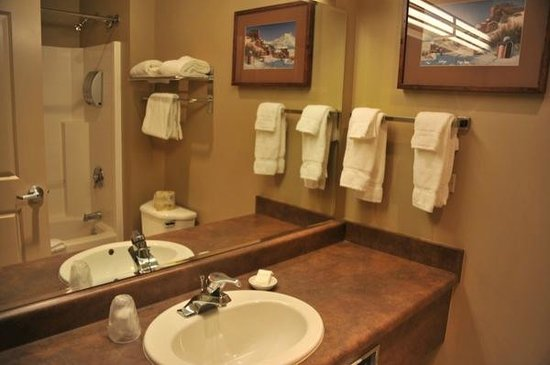 Copper River Princess Wilderness Lodge: salle de bain