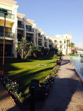 Hilton Hurghada Resort: August 2014