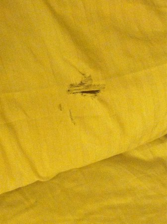 La Quinta Inn & Suites Tulsa Airport / Expo Square: Torn sheets! Didn't take pictures of stained towels! Room 214