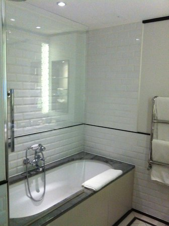 The Waldorf Hilton London: shower