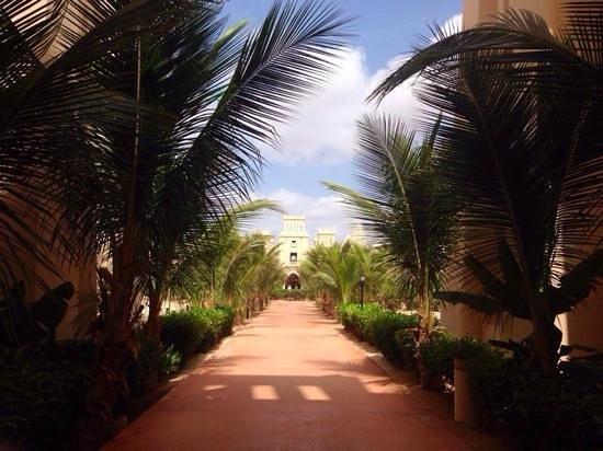 Hotel Riu Touareg: hotel grounds
