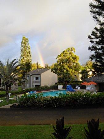 Makai Club: yes...a rainbow