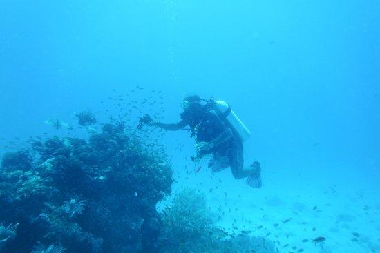New Son Bijou Diving Center: Ahmed