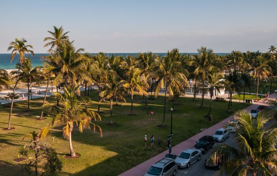 Lummus Park Beach: Lummus Park from Our Hotel Roof