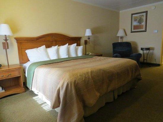 BEST WESTERN PLUS Revere Inn & Suites: Bedroom View #1