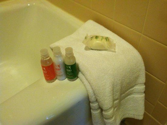 Disney's Saratoga Springs Resort & Spa: bathroom supplies