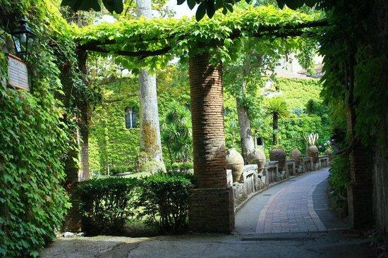 Villa Cimbrone Gardens: viale d'entrata