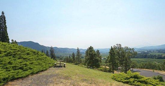 Hood River, Орегон: Panorama_Point_SP_View_2