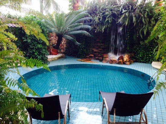Amazon Plaza Hotel: Piscina