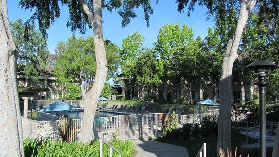 Sheraton Sunnyvale: Pool again
