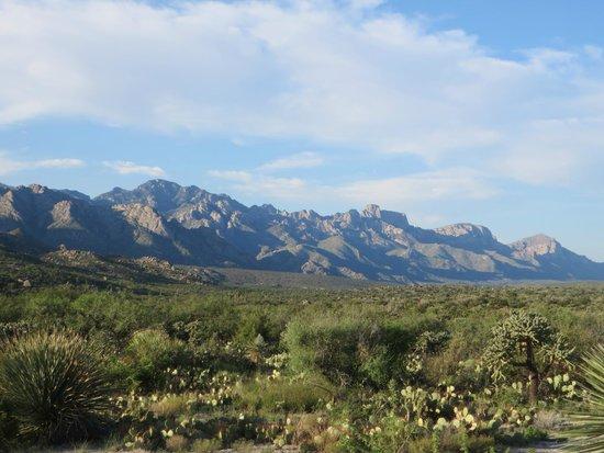 Miraval Arizona Resort & Spa: View from the resort