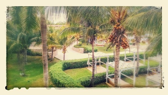 Iberostar Grand Hotel Paraiso: View of grounds near main pool