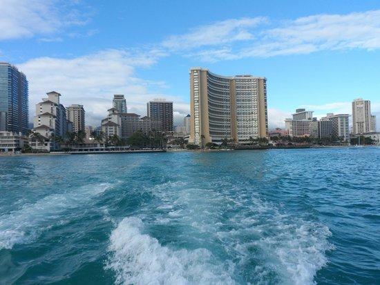 Hilton Hawaiian Village Waikiki Beach Resort: Port Hilton Sailing Trip