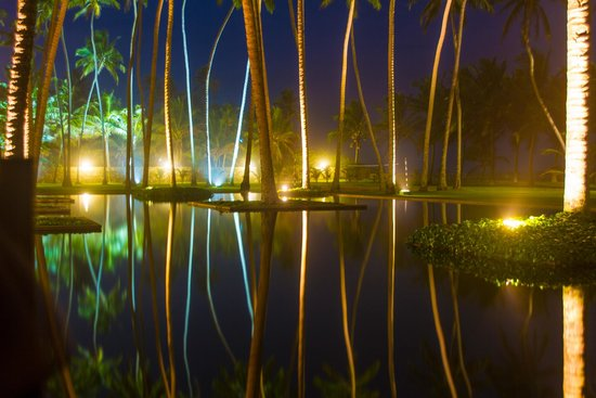The Blue Water: Pool area - night view
