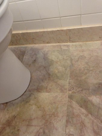 Moffett House: New Marble Bathroom Floors