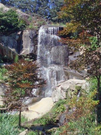 Maymont: Waterfall near Japanese Garden