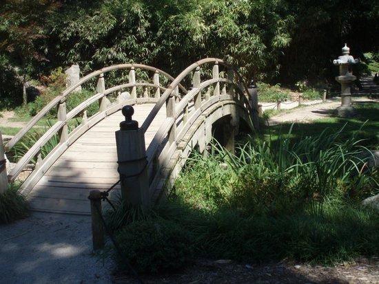 Maymont: Bridge Japanese Garden