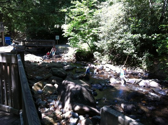 Montreat, NC: Youngsters wading the creek