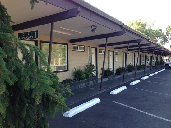 Redwood Hyperion Suites : A little old style, a little modern!
