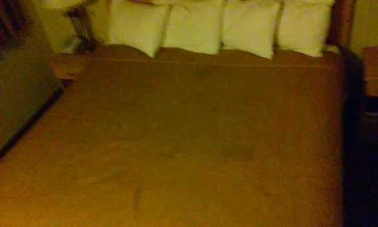 Travelodge Riviera Beach/West Palm: Stains on the comforter