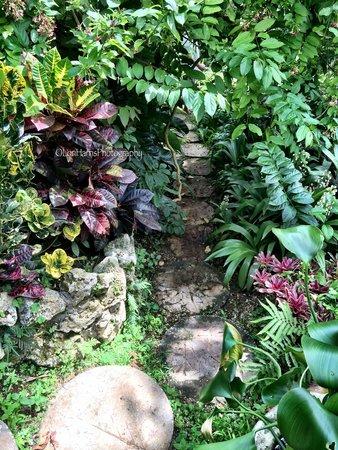 Hunte's Gardens : Secret Gardens like this are soulful! #loriharrisphotography