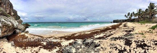 Bottom Bay, Barbados #loriharrisphotography