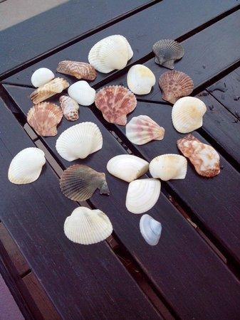 Anantara Mui Ne Resort: Am Strand gefunden