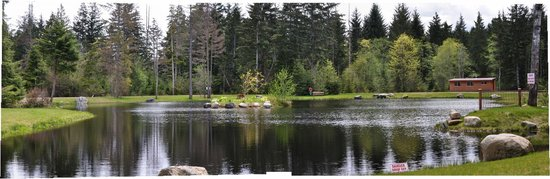 Seal Bay RV Park & Campground : Our pond ... benches situated all around just to sit and relax