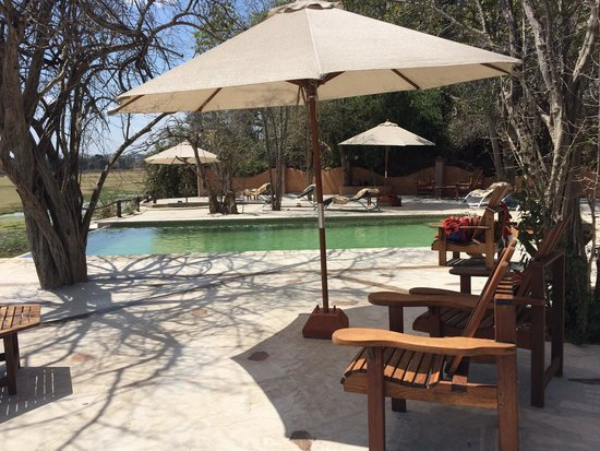 Kafunta River Lodge: Great view of the grass plains from the pool