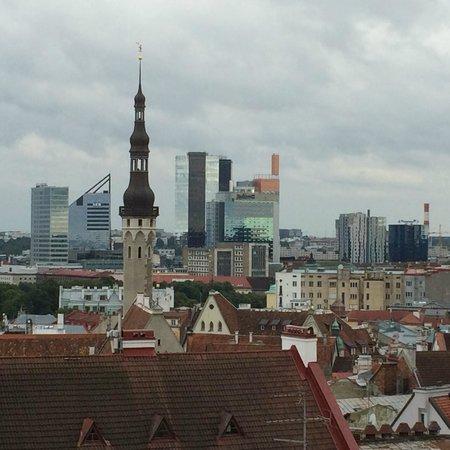 Tallinn Old Town: mirante